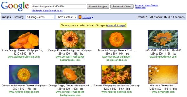 Advanced Image Search Reuslts