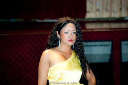 instylenepal-fashion-show-houston-20100926-60