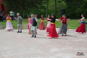 nepali-new-year-2068-celebration-nst-20110410-27