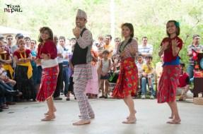 nepali-new-year-2068-celebration-nst-20110410-65