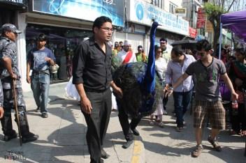 ncell-purple-saturday-kathmandu-20120421-10