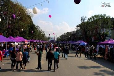 ncell-purple-saturday-kathmandu-20120421-16
