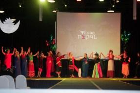 ana-cultural-night-dallas-20120630-110