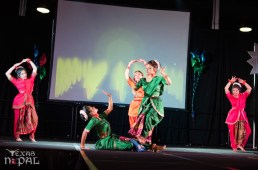 ana-cultural-night-dallas-20120630-19