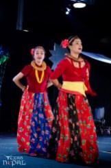ana-cultural-night-dallas-20120630-47