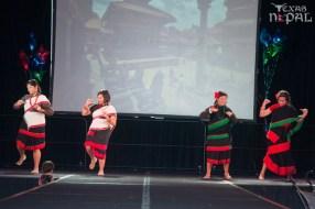 ana-cultural-night-dallas-20120630-52