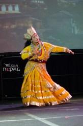 ana-cultural-night-dallas-20120630-78