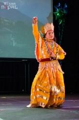 ana-cultural-night-dallas-20120630-79