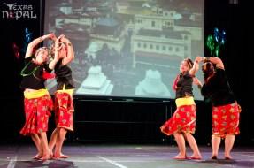 ana-cultural-night-dallas-20120630-98