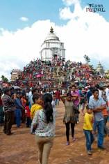 gaijatra-kathmandu-20130822-12