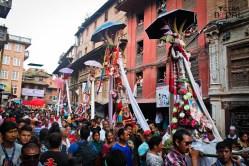gaijatra-kathmandu-20130822-20