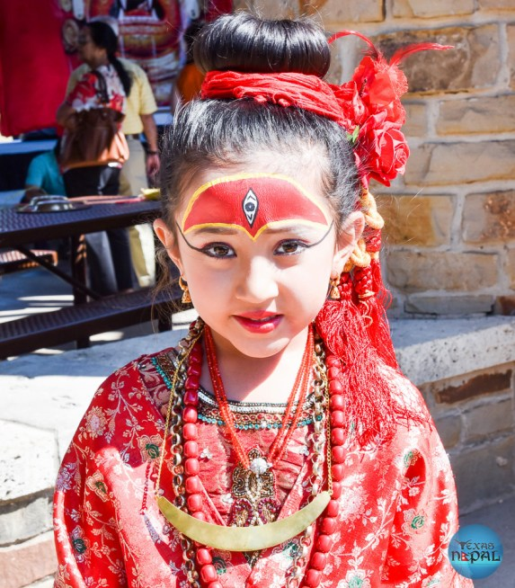 Indra Jatra Celebration 2015 Texas - Photo 19