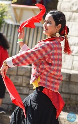 walk-for-nepal-dallas-2017-53