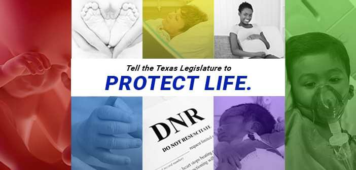 Pro-Life priority bills of the 85th Session of the Texas Legislature in 2017