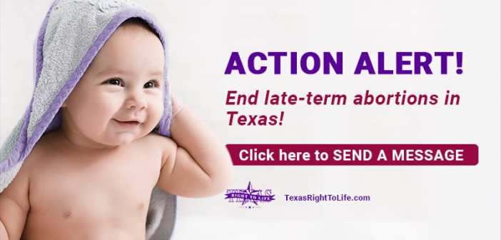 End late-term abortions!  Urge the Texas Senate to act!