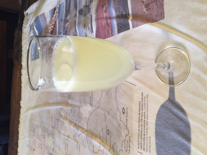 Pouring over the map of local excursions with the help of some pisco sours flavored with local rica rica.