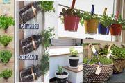 Όμορφες ιδέες για να φτιάξετε μονοι σας μικρούς κήπους με τα βότανα