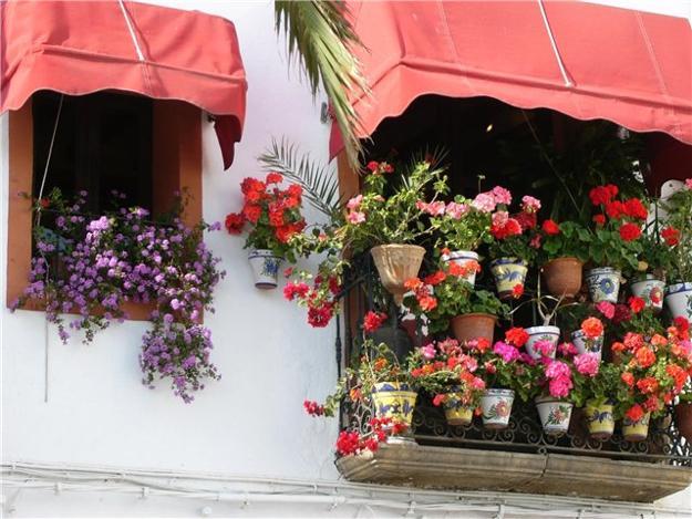 Διακόσμηση μπαλκονιού με λουλούδια7