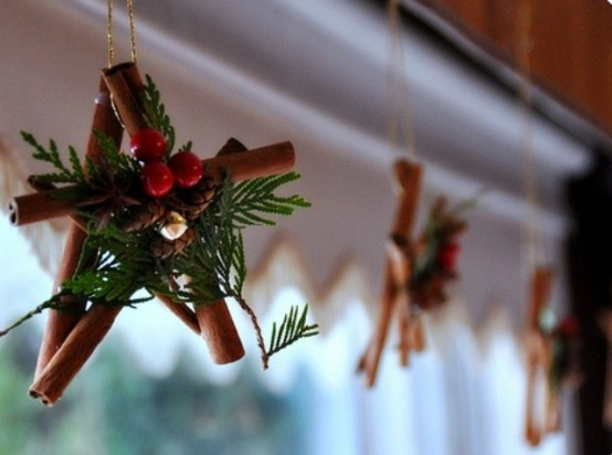 Υπέροχες Αρωματικές Ιδέες Χριστουγεννιάτικής Διακόσμησης με ραβδάκια κανέλας33