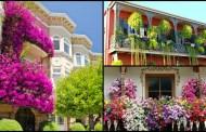 Εικόνες με καταπληκτικούς κήπους μπαλκονιών που πρέπει να δείτε