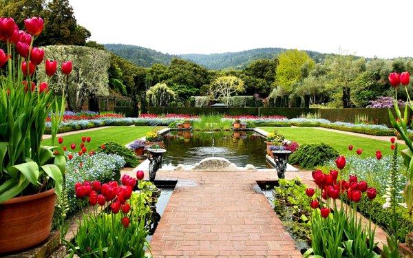 φυτογραφίες για το σχεδιασμό κήπων104