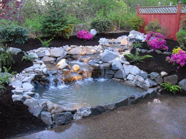 φυτογραφίες για το σχεδιασμό κήπων122