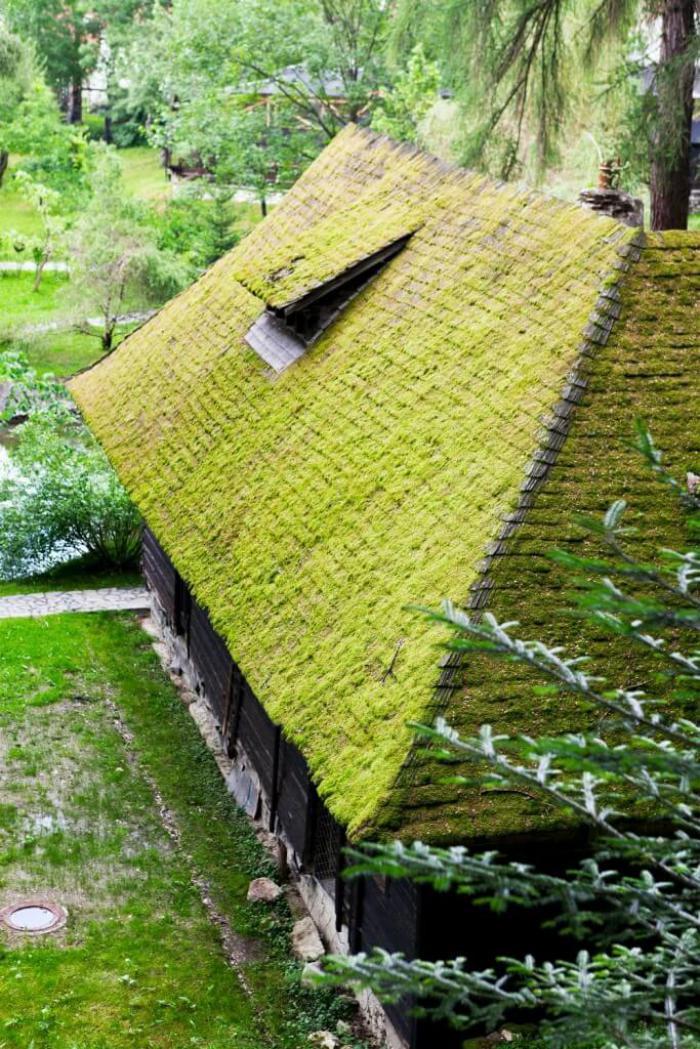 Πράσινη στέγη ιδέες2