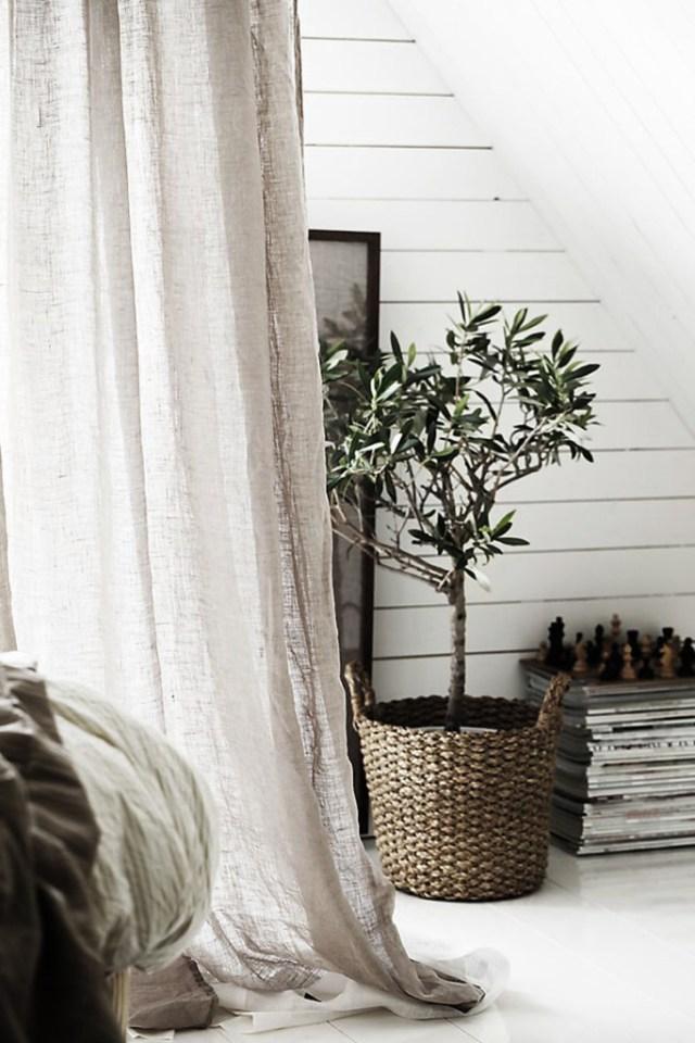 Διακοσμώντας με ελιές σε εσωτερικούς χώρους14