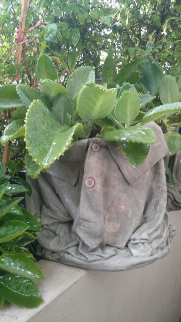 diy γλάστρες στον κήπο από τσιμέντο και παλιά ρούχα1
