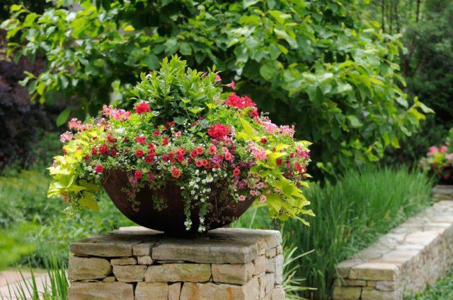 ιδέες σχεδιασμού μπροστινού κήπου και αυλής40