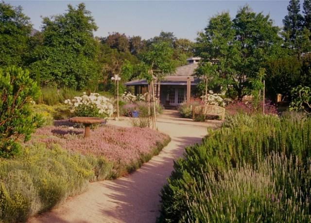 Μεσογειακός κήπος ιδέες23
