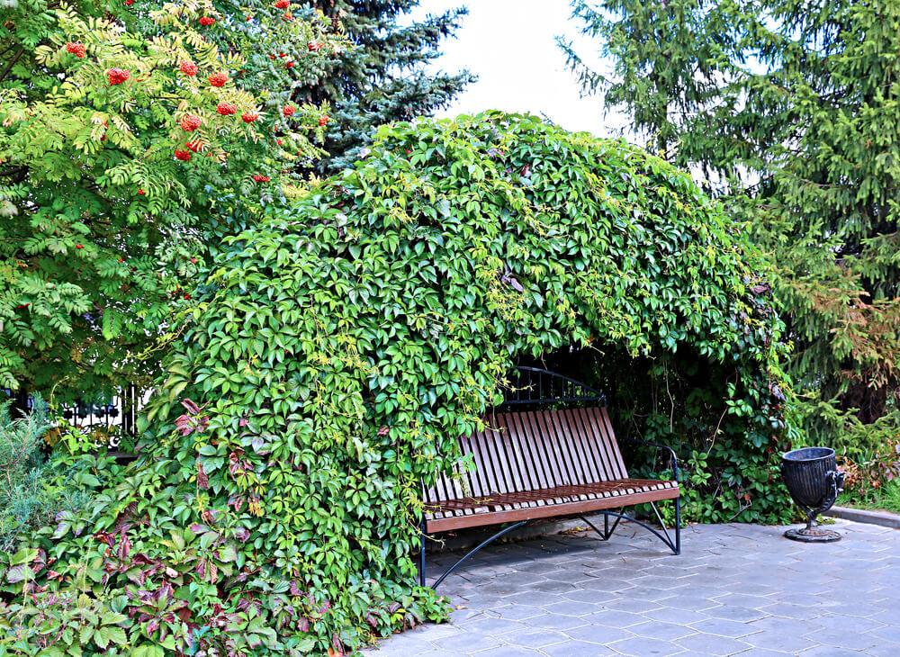 παγκάκια κήπου1