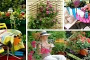 Λουλούδια στο μπαλκόνι: μια πολυτελής συλλογή φωτεινών ιδεών
