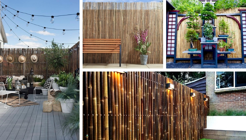 Καταπληκτικές ιδέες για φράχτες από καλάμι μπαμπού για να ομορφύνετε την αυλή και τον κήπο σας