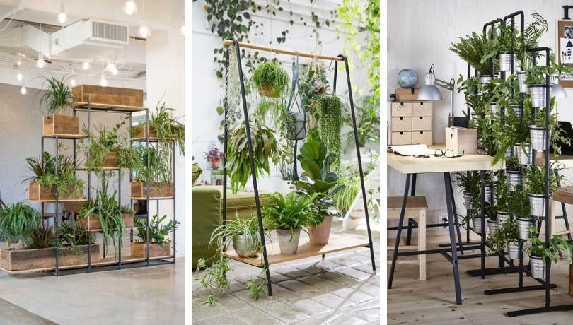 Φανταστικά διαχωριστικά δωματίων που εμπνέονται από τη φύση με διακοσμητικά φυτά