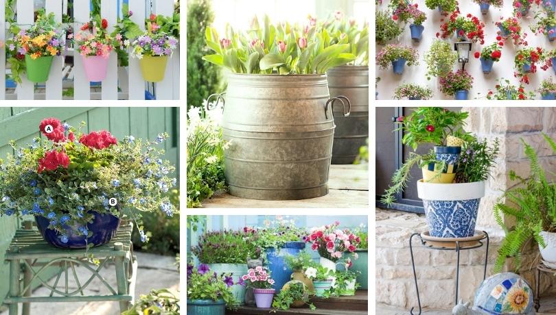 43 Μοδάτες ιδέες διακόσμησης με λουλούδια σε γλάστρες που θα αναβαθμίσουν εκπληκτικά το σπίτι σας