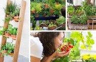 Κάντε τη βεράντα σας έναν υπέροχο κήπο λαχανικών ξεκινώντας από αυτή την εποχή