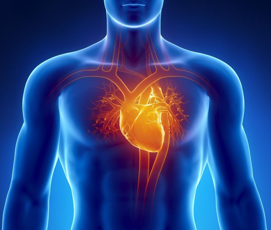 Cardiomyopathy-Diseases_1495581873714.jpg