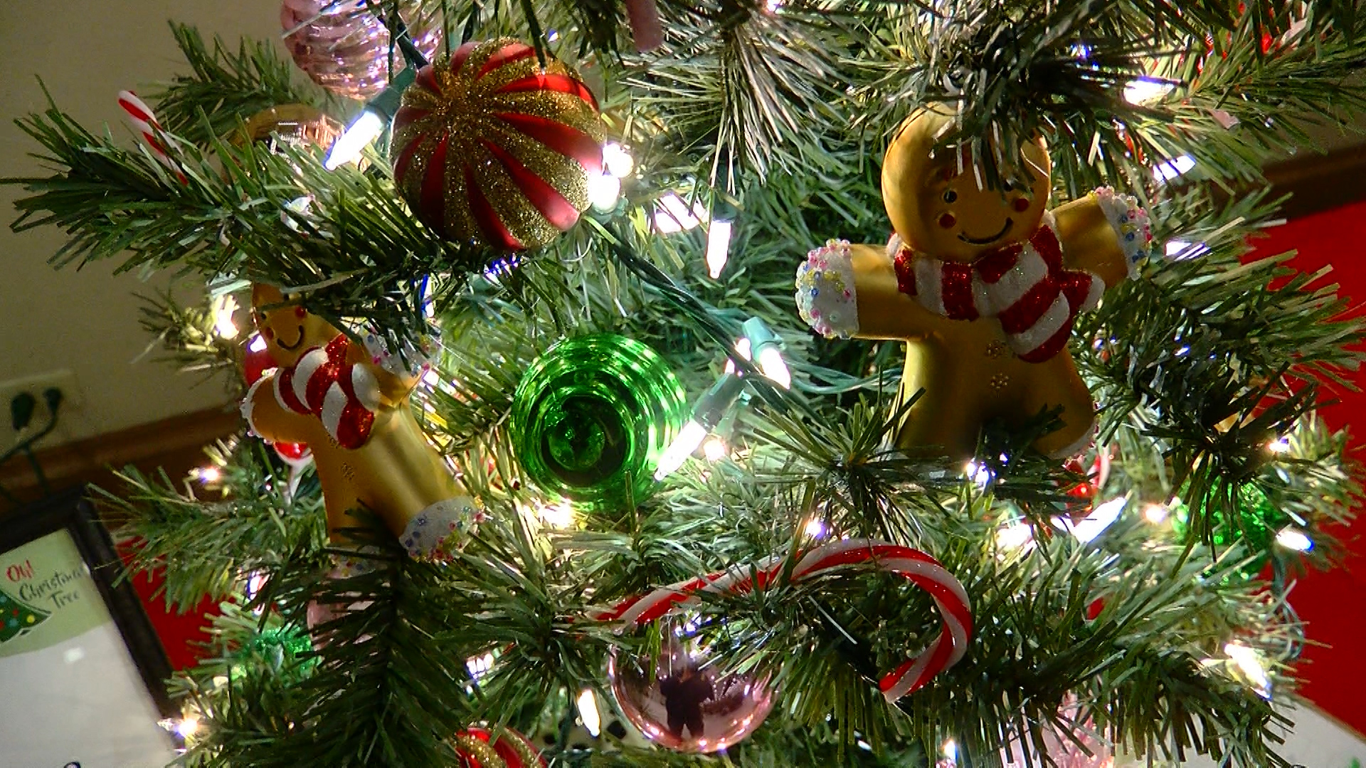 Hospice Of Wichita Falls To Kick Off 34th Annual Tree Of