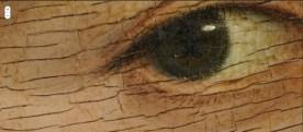 Detail: Craquelé
