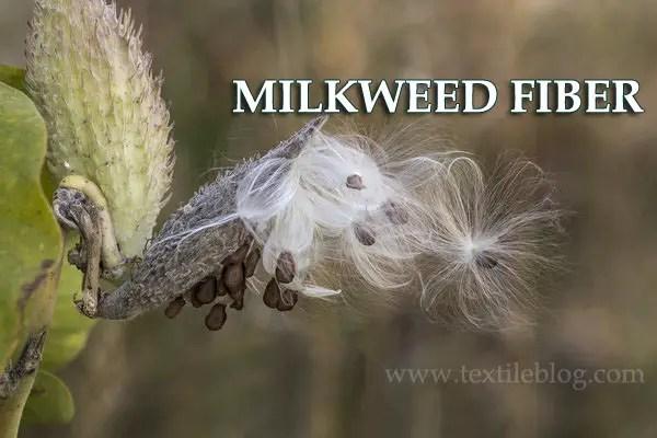 milkweed fiber