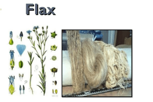Flax Manufacturing Process