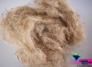 Why all the fibers are not textile fiber