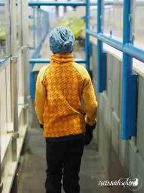 Designbeispiele Raglansweater Max&Maxi (279)