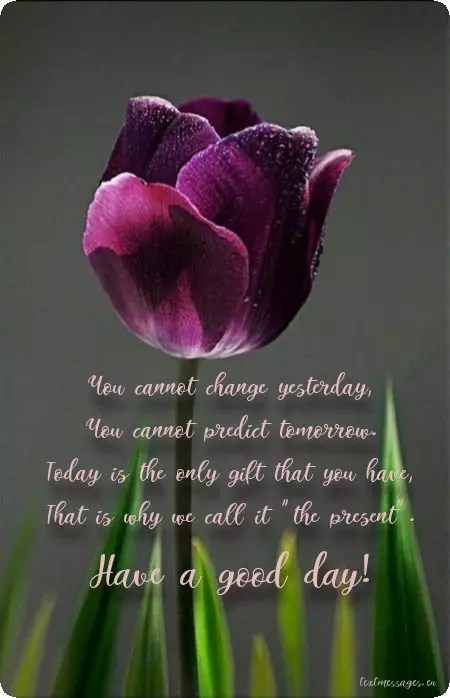 Top 80 Good Morning Messages For Friends With Images