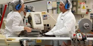 automático IFE Laboral