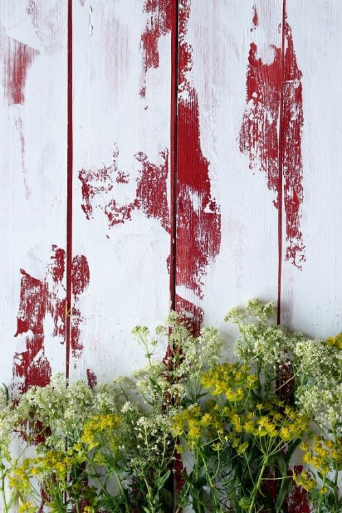 distressed photographic backdrop