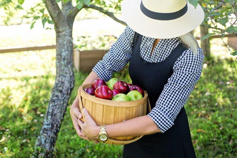 home based Gardening business for women