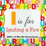 ABCs of Why We Homeschool I I is for Igniting a Fire