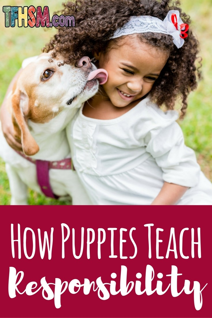 How Puppies Teach Children Responsibility - The Frugal Homeschooling Mom